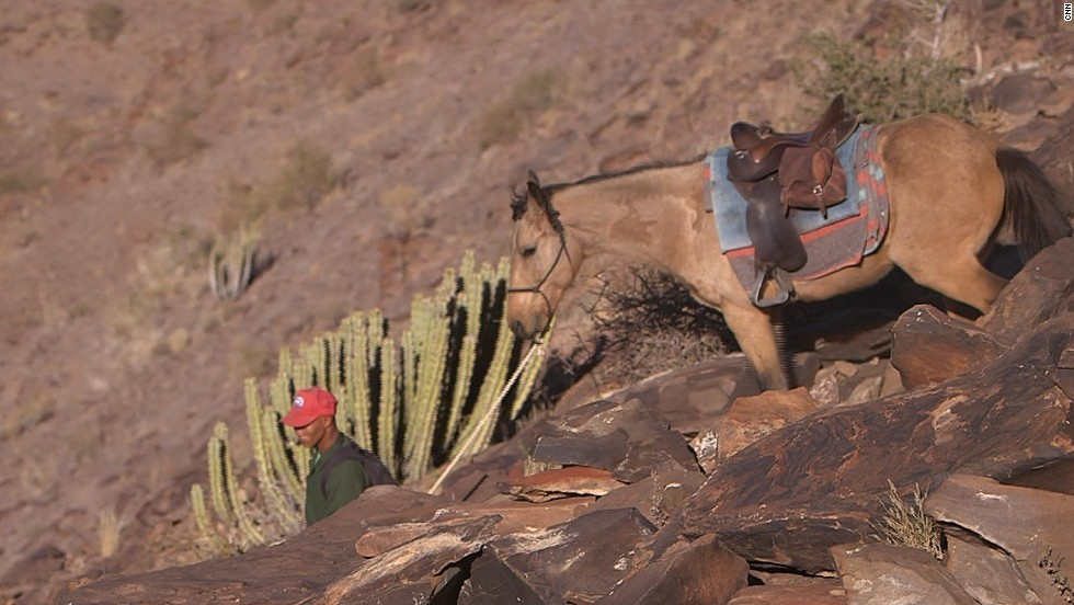 Tour companies, like The Gondwana Collection, offer mule trekking to Fish River Canyon. It is a low-impact means of tourism in the area.