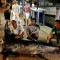 07 700 Pound swordfish