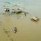 16 india flooding 0905