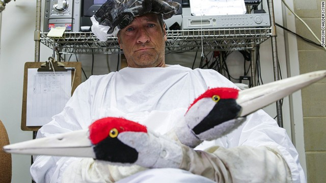Rowe traveled to a Maryland facility that's helping to replentish the endangered whooping crane population. Armed with crane puppets and special clothing, Rowe joined workers who interact with the birds.