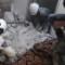 syria aug 29