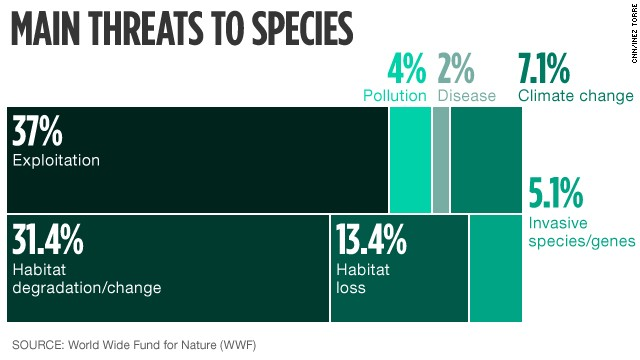 Main threats to wildlife