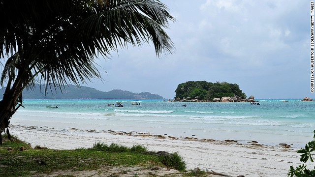 View a palm tree on a beach on Praslin island on March 6, 2012.
