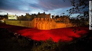 Poppies commemorate fallen in WWI