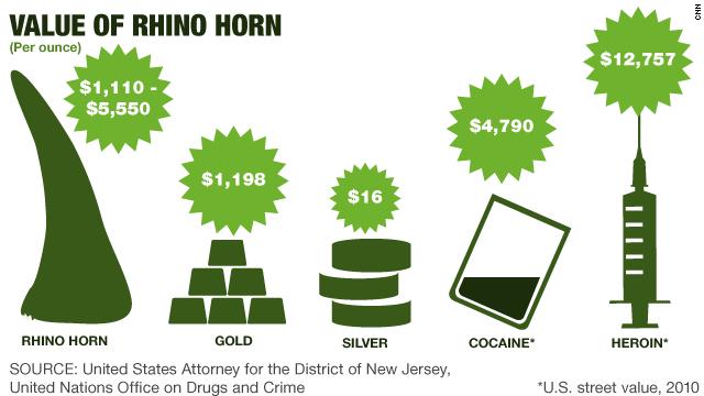 Value of rhino horn