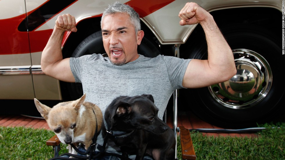 "No one's safe when it comes to Internet death hoaxes, and that includes popular dog trainer Cesar Milan. After erroneous reports that Milan had died erupted in early December, <a href=""http://instagram.com/p/wJsmhWuXQ3/"" target=""_blank"">he posted a rebuttal on Instagram</a>, assuring his fans that he was ""safe, happy and healthy."""