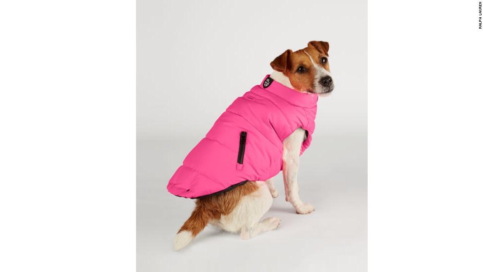Ralph Lauren winter jackets for the demanding pooch.
