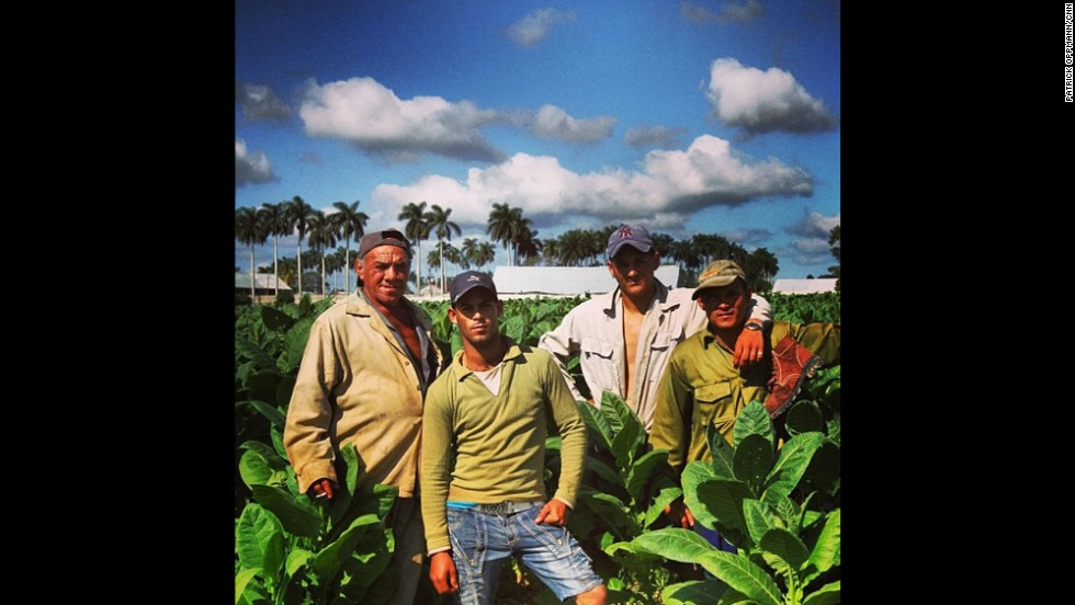 Tobacco workers take a break from picking leaves that will be dried and rolled into cigars, Oppmann says.