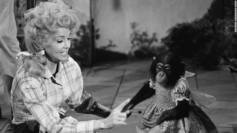 "<a href=""http://www.cnn.com/2015/01/02/showbiz/tv/feat-donna-douglas-beverly-hillbillies-elly-may-dead/index.html"">Donna Douglas</a>, who played voluptuous tomboy daughter Elly May Clampett on the 1960s TV series ""The Beverly Hillbillies,"" died January 2. She was 81."