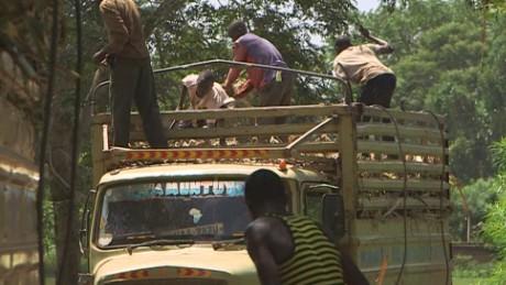 spc marketplace africa uganda sugar cane farming_00000111.jpg