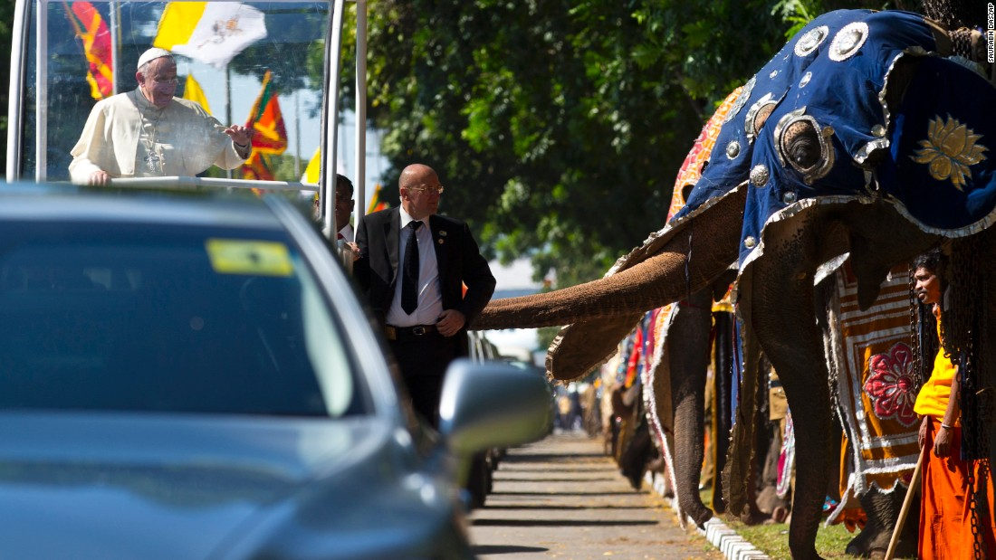 The Pope waves as he passes a row of decorated elephants in Colombo on January 13.
