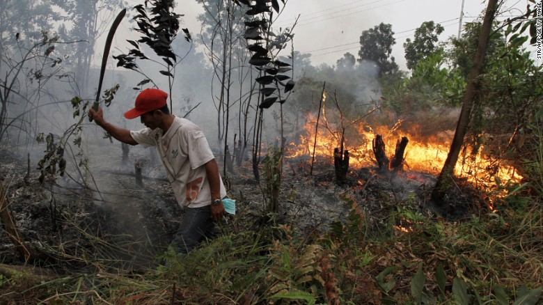 A resident attempts to put out a fire spreading through a plantation in Dumai district, Riau province, Sumatra, March 3 2014.