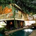 inventionland treehouse
