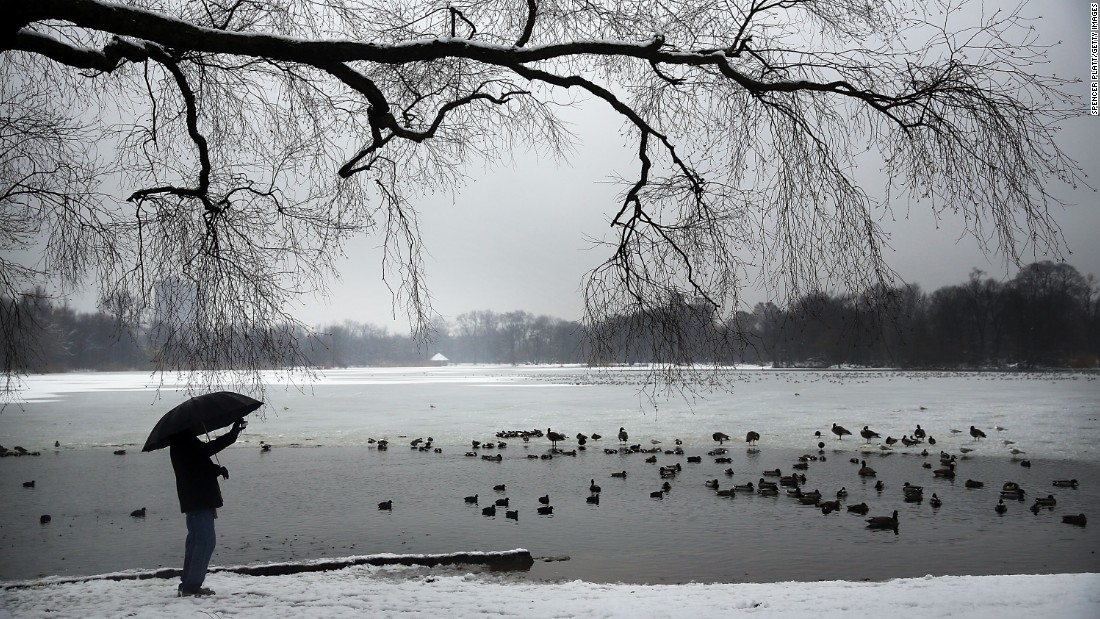 A man takes a picture of ducks and geese at a lake in Brooklyn's Prospect Park following an evening storm Saturday, January 24 in New York City.