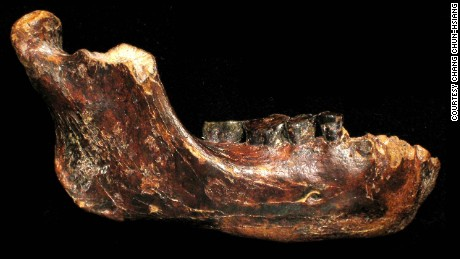 A newly discovered jawbone fossil could come from a previously unknown species of ancient human who lived tens of thousands of years ago.