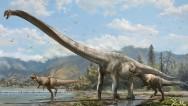 Hallan un 'dragón' dinosaurio de 15 metros