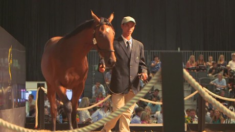 spc winning post horse auction_00002214.jpg