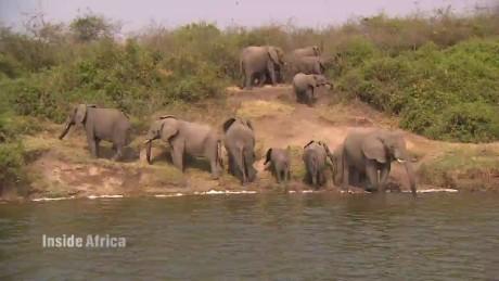 spc inside africa uganda queen elizabeth park b_00024524.jpg