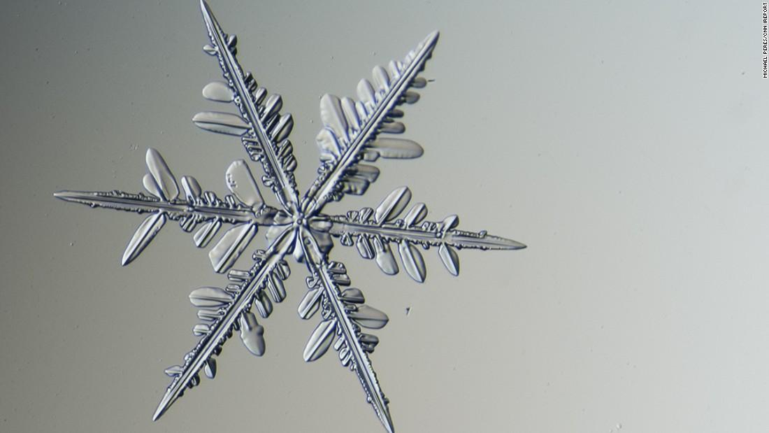 capturing snowflakes under a microscope cnncom