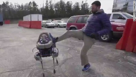 Robot dog Spot runs just for kicks