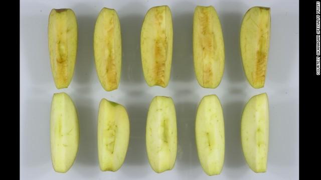 EE.UU. aprueba producción de manzanas modificadas genéticamente