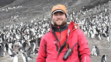 Tom Hart with a chinstrap penguin colony on the Saunders Island in the South Sandwich Island archipelago.