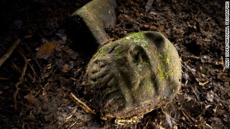 Lost city discovered in jungle...