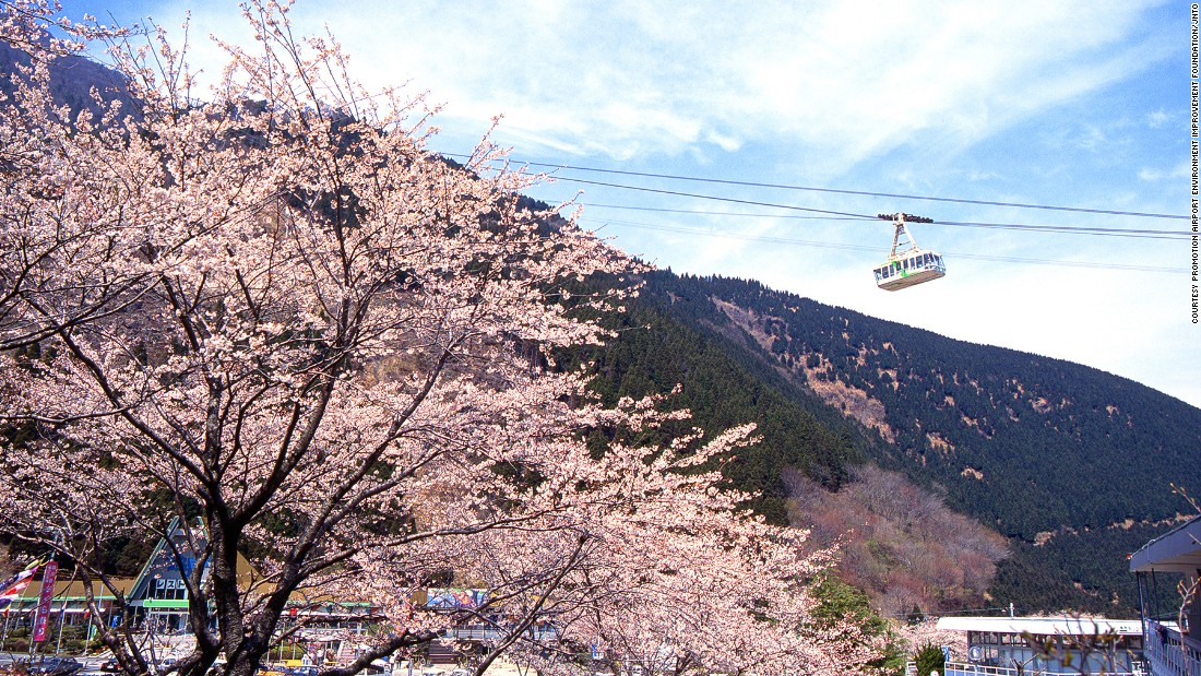 "For those who don't enjoy hiking, this cable car can carry 101 passengers at a time to the top of the 1,375-meter-high Mt. Tsurumi in 10 minutes. <br />From the top, there's a view of Beppu, Mount Yufu and Kuju Mountain Range. <br />The best time to ride up is during spring when more than 2,000 cherry trees blossom on the mountain.<em><br /><a href=""http://www.beppu-ropeway.co.jp/"" target=""_blank"">Kintetsu Beppu Ropeway</em></a><em>, Oaza Minami Samuhara 10-7, Beppu, Oita, Japan; +81 977 22 2278</em>"