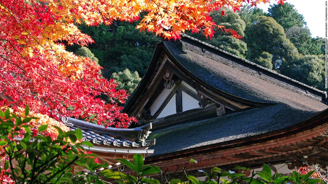 "Located in the Suzuka mountain range, Saimyoji Temple is one of a trio of ancient Tendai Buddism temples in eastern Shiga, also known as ""Koto Sanzan."" <br />The temple is renowned for the beautiful red and orange leaves that surround it in the fall and long blooming cherry trees.<a href=""http://www.saimyouji.com/"" target=""_blank""><em><br />Saimyoji Temple<em></a></em>, 26, Ikedera, Inukami, Shiga, Japan; +81 749 38 4008</em>"