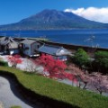 beautiful japan Senganen Garden Mt. Sakurajima view