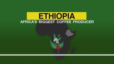 spc africa view ethiopian coffee_00001903.jpg