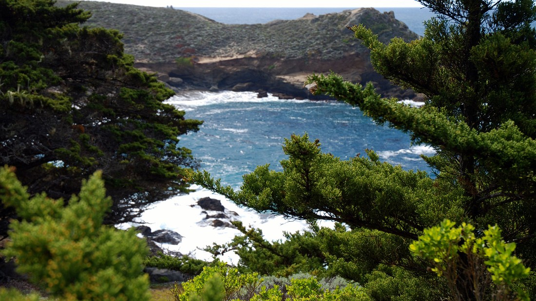 """The Point Lobos State Natural Reserve in Monterey County is popular with hikers. It's sometimes billed as the """"greatest meeting of land and sea in the world."""""""