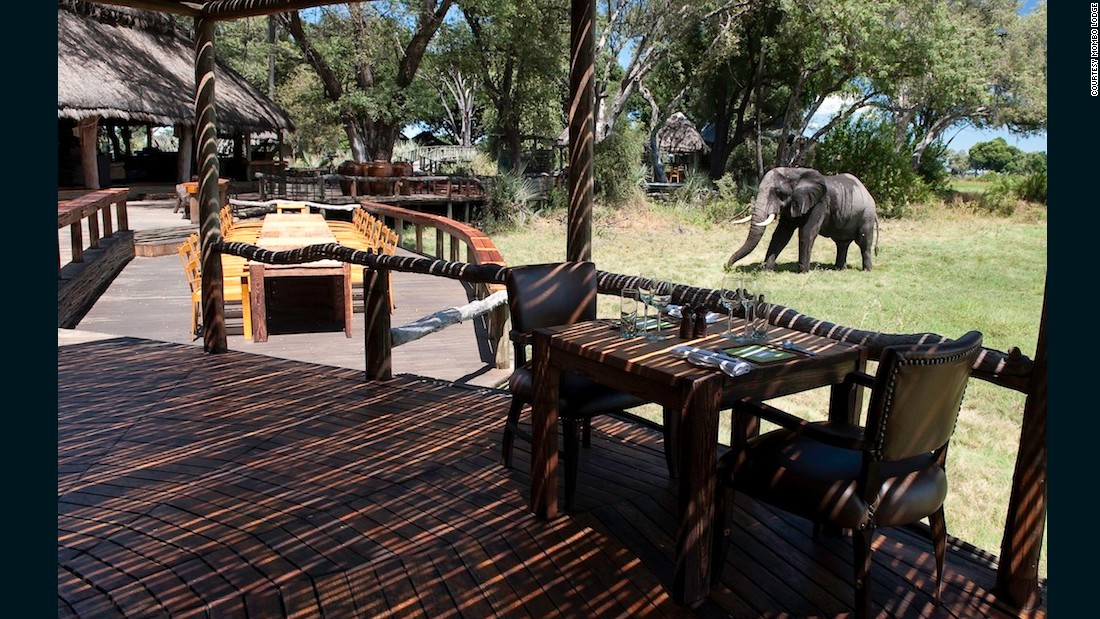 """""""Mombo is not only the flagship of Wilderness Safaris, but it has become arguably the most must-visit safari lodge in Africa -- that's not because it is overly luxurious but because the game viewing there is so exceptional. It is also where, progressively, this  safari company rolls out its newest and best environmental practices and technologies."""""""