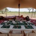 Eco lodges camp nomade