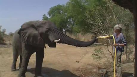 chad elephant protection zakouma national park_00000014
