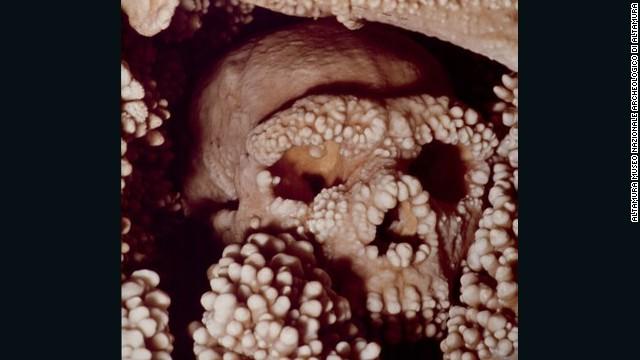 El ADN más antiguo del mundo proviene de un neandertal que se cayó a un pozo