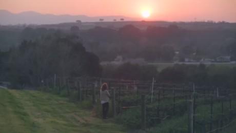 cnn$ ahead retire your way california wine country_00024302