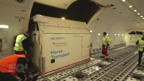 spc equestrian horse transport_00004922.jpg