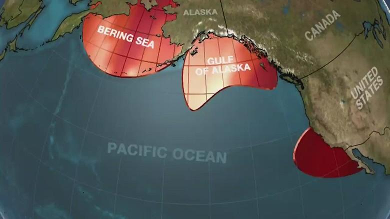 Blob Pacific Ocean Warm Waters Weather Jennifer Gray_00000915