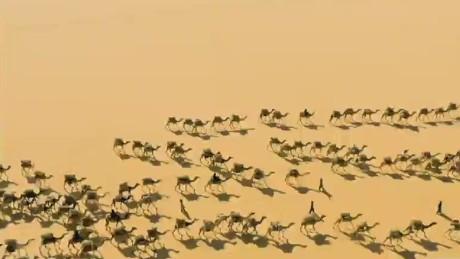 intv steinmetz aerial desert photography_00004027
