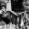 Brain puzzles - Monkey