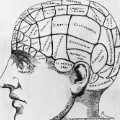 Brain puzzles  - phrenology