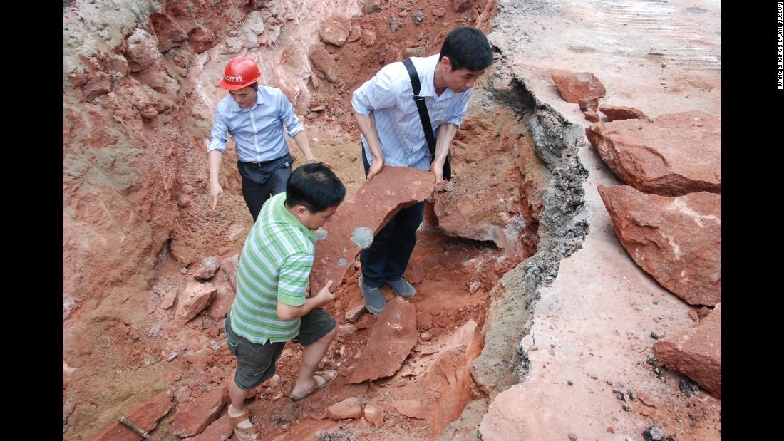 Κίνα αυγά δεινοσαύρων