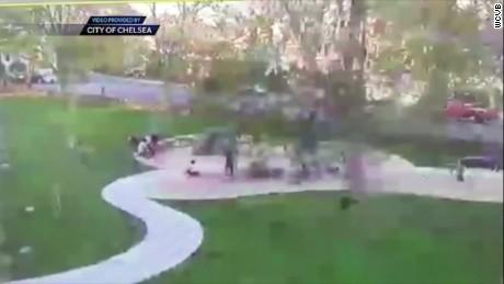 pkg tree at park falls on children _00000508