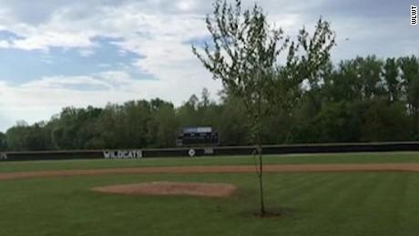 pkg tree prank baseball field_00002321.jpg