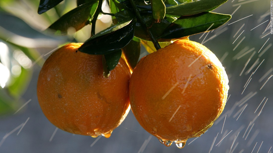 One large orange offers 4 grams of fiber for just 86 calories.