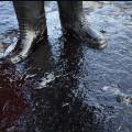 02 oil spill 0520