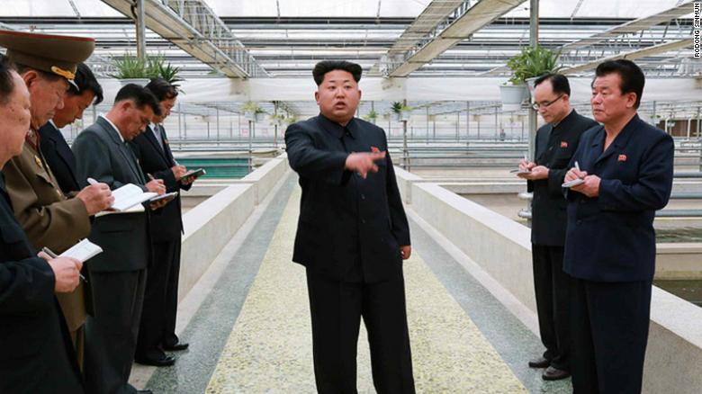 An undated photo released on Tuesday, May 19 shows North Korean leader Kim Jong Un at a terrapin farm.