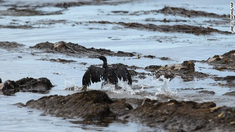Company behind oil spill has history of violations