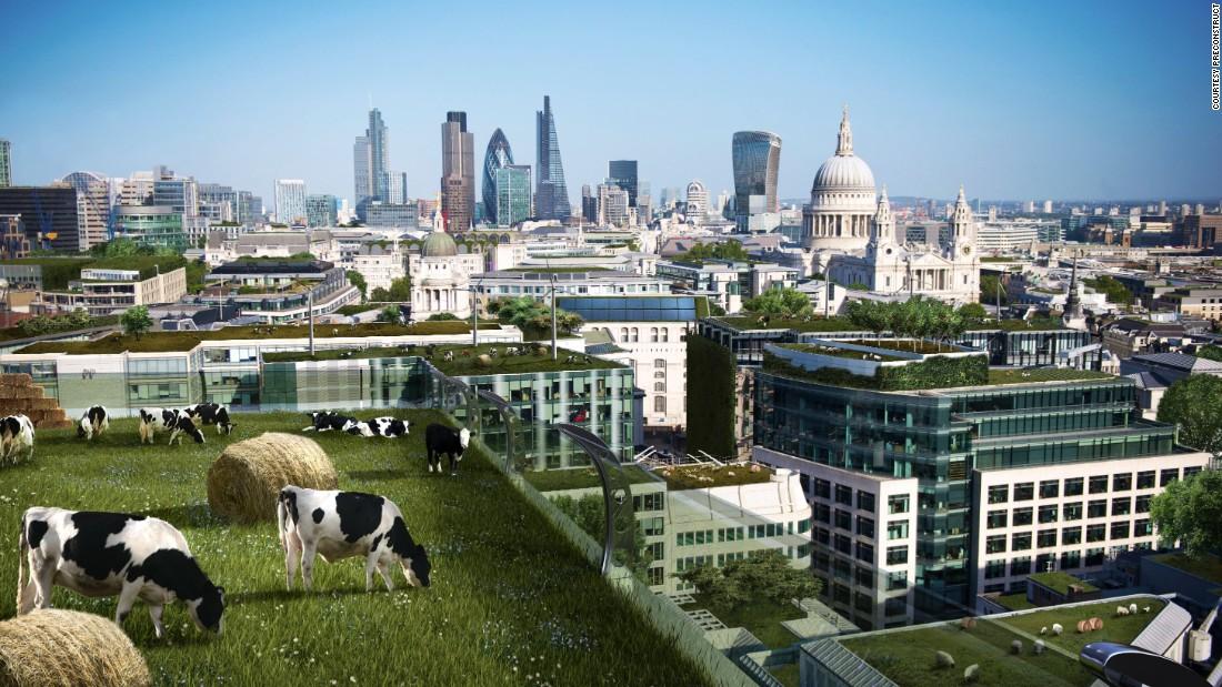 http://i2.cdn.turner.com/cnnnext/dam/assets/150526144847-future-city-london-urban-farms-super-169.jpg